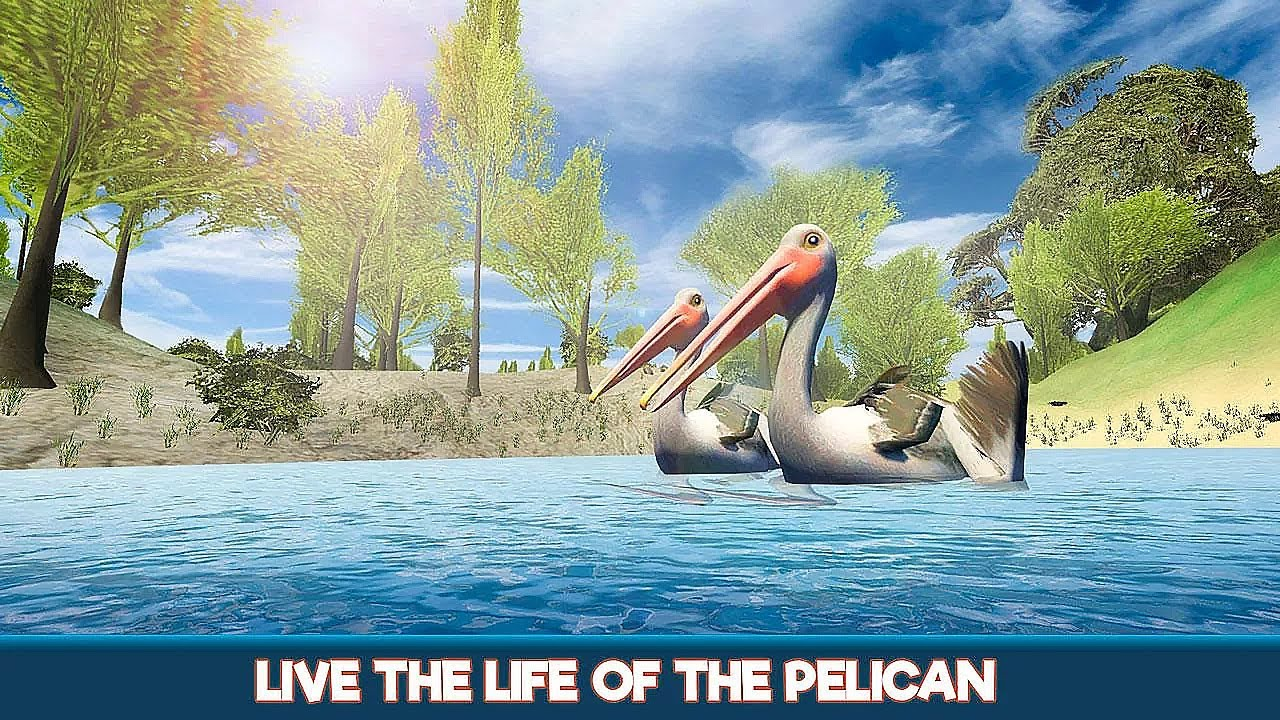 Pelican Bird Simulator 3D - Android Gameplay