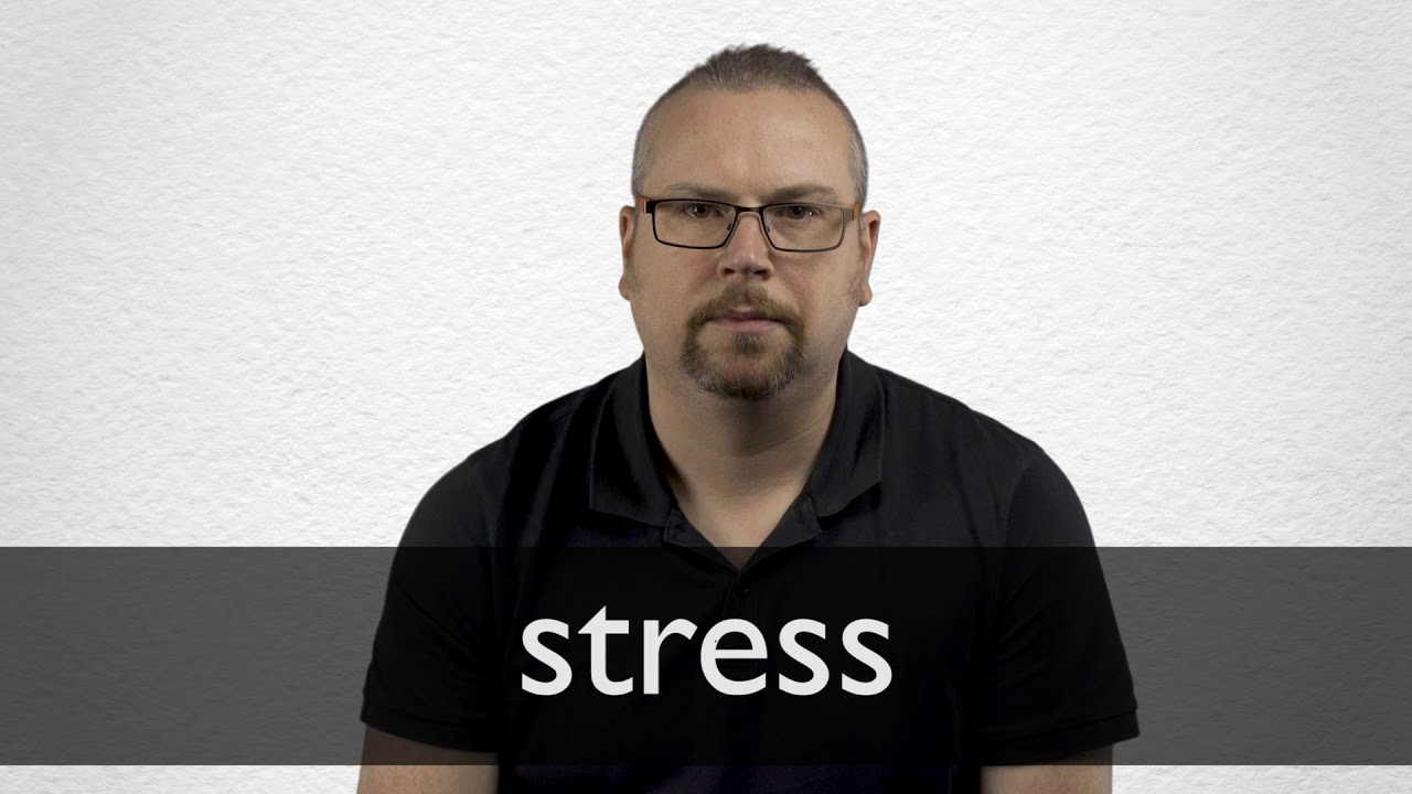 Stress Synonyms | Collins English Thesaurus