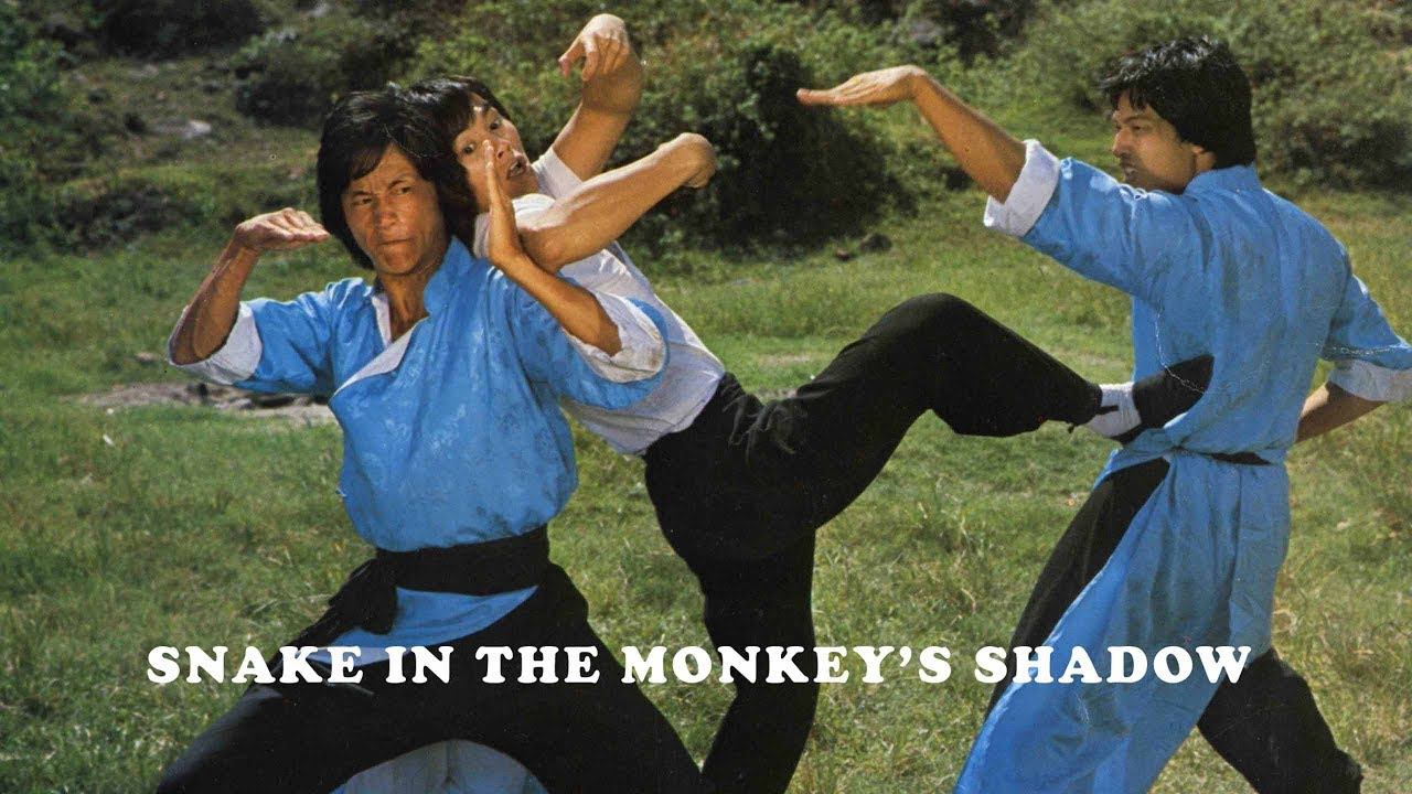 Wu Tang Collection - Snake In The Monkey Shadow