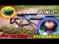Berburu Bajing Di Spot Melimpah Pcp Gaman Tactical Bonus Kera Langka  Mp3 - Mp4 Download