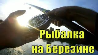 На Березине с Ночевкой Рыбалка в Беларуси На реке Березина Ловля на кузнечика