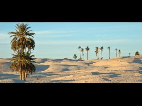Africa 8: antichi reperti, popoli e tradizioni del nord