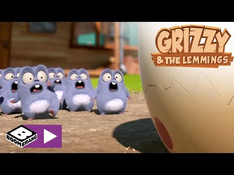 Grizzy & the Lemmings | Dinosaur | Boomerang Africa
