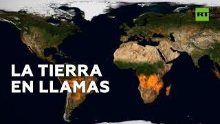 Este mapa muestra todos los incendios forestales del 2019