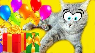 ДЕНЬ РОЖДЕНИЯ!! Супер Кот МАКС делает подарок!