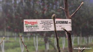 Vivai Mazzoni ad #interpoma 2016