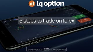 How to Trade Forex with IQ Option