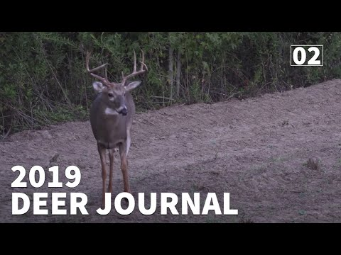 2019 GEORGIA OPENER On PUBLIC & PRIVATE LAND - 2019 Deer Journal | Ep. #2 | OnX Hunt App