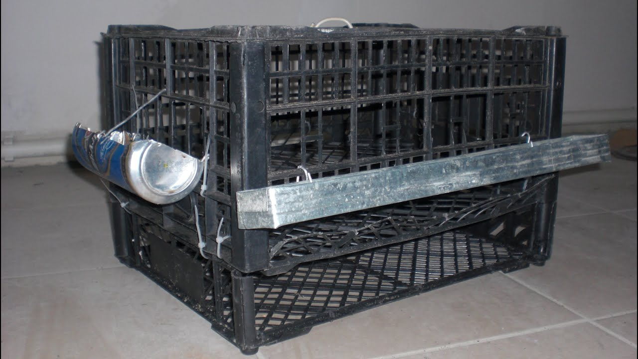 № 14 Клетка для перепелов за 45 минут. Cell for quail own hands .