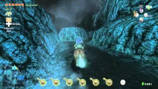 Zelda Twlight Princess HD Stag Beetle Location Golden Bugs