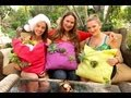 """Succulents: Make a """"Living Succulent Tapestry Pillow"""" in Under 5 Minutes!"""