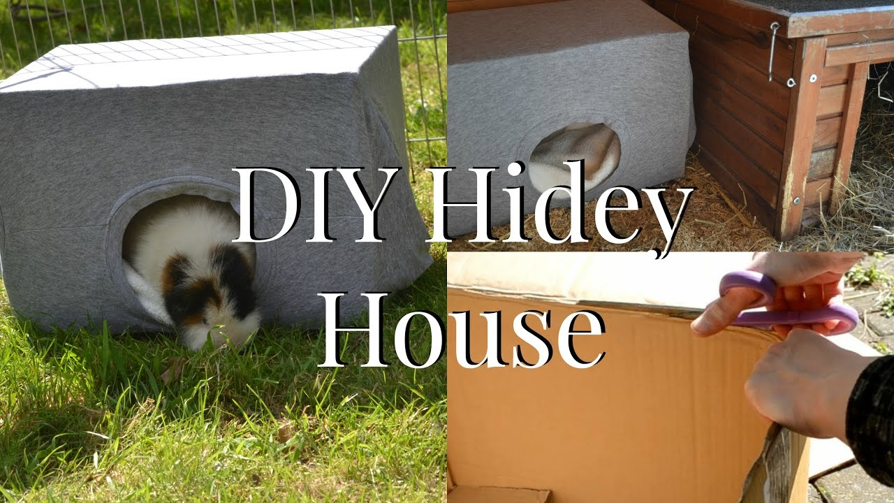 Diy Animal Hidey House Toy 5 Minutes No Sew Imy