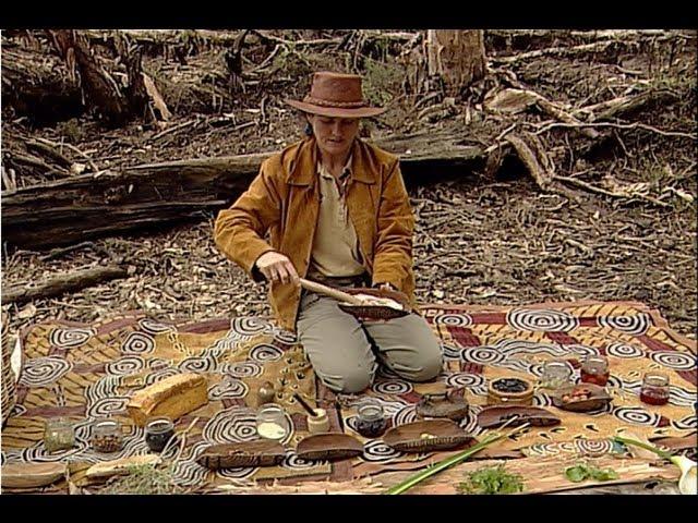 Australian Bush Tucker Food with Helen Lee