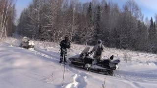 Охота от первого лица. s5. На снегоходах в -30.(Пара эпизодов одного дня в лесу. Ищем следы кабанов, для того чтобы завтра организовать большую охоту, челов..., 2016-12-18T12:20:40.000Z)