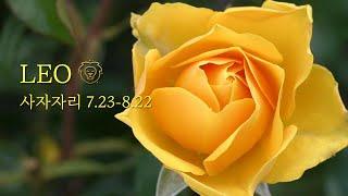 "❤️사자자리 - ""드디어 잭팟! "" 8.16-22 #8월별자리운세 #상대방속마음타로 #관계…"
