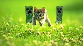 """Клип Minecraft под песню-""""Сегодня поиграю я в minecraft"""""""