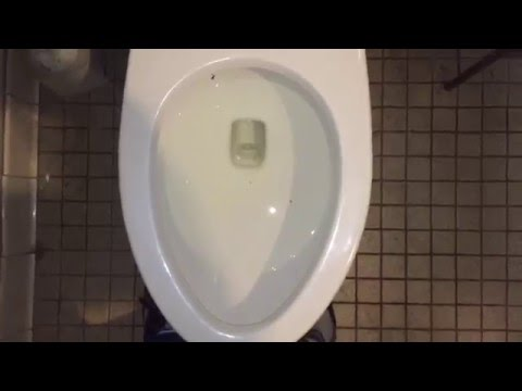 Toilet With Pressure Flush