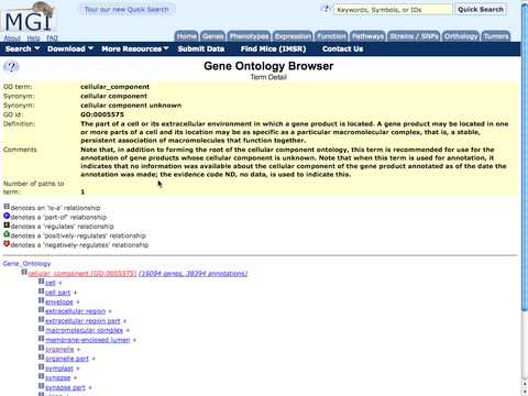 Introduction to Biomedical Ontologies #1:  What is an Ontology?