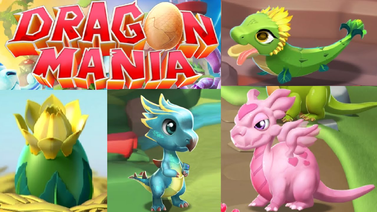 how to breed a love dragon in dragon mania legends