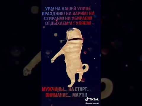 Танцующий мопс