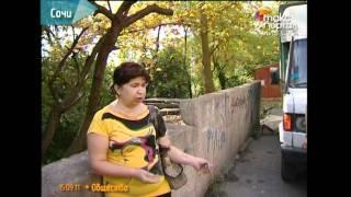 Уничтожение кошек на Донской - отрава уже закуплена