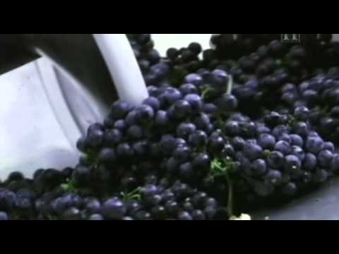 Moderne Wunder - Wein