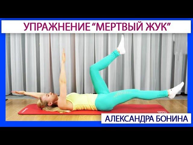 ►Мертвый жук: 4 уровня упражнения на пресс и весь мышечный корсет