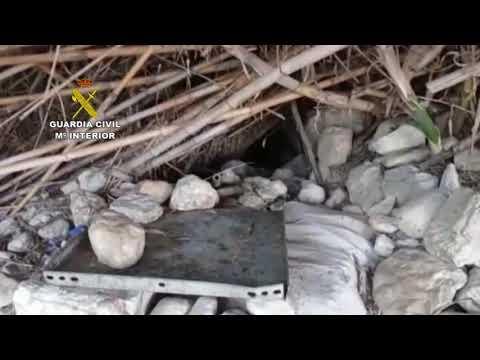 Rescate de cachorros y perros adultos por la Guardia Civil de Baena en tres operativos en Guadajoz
