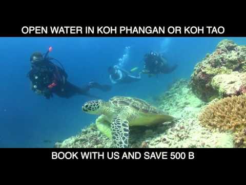 Open Water Offer [Blue Dream Hostel]