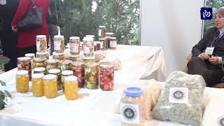 انطلاق مهرجان الزيتون السادس عشر ومعرض منتجات المرأة الريفية - (29-11-2017)