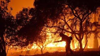 منوعات الآن   ألسنة اللهب تلتهم غابات وأشجار في بوليفيا