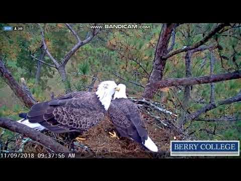 Martha i Henry - Berry College - Georgia 09.11.2018