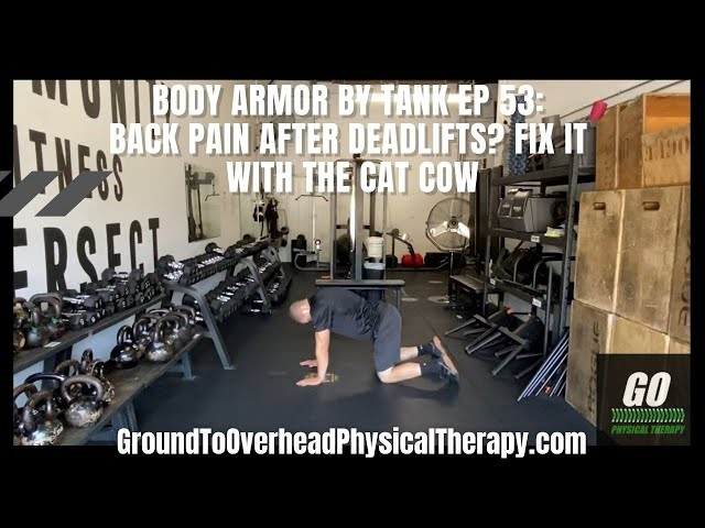 Body Armor By Tank Ep 53: Back pain after Deadlifts? Fix it with the Cat Cow