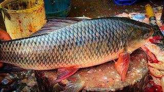 Pleasing Knife Skills Of Cutting Rohu Fish, Big Rui Fish Skinning And Chopping By Expert Fish Cutter