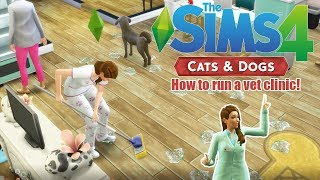 Download Video HOW TO START AND RUN A VET CLINIC! | The Sims 4 Cats and Dogs | TIps & Tricks MP3 3GP MP4