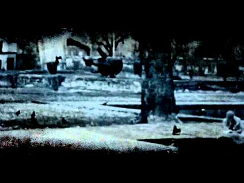East Stepper - Dilruba Official Music Video  (Full HD)