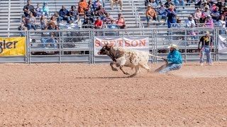 2017 Arizona Black Rodeo