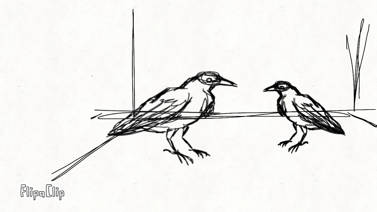 Картинки нервы вороны