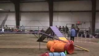 Kiva Osojnicki Standard Agility Run 3/15/09