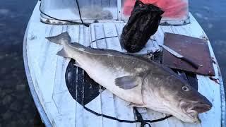 Морская рыбалка Баренцево море Осень октябрь 2020