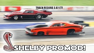 '67 SHELBY PROMOD! TWIN TURBO! TOP DOG WINNER! TRACK RECORD 3.82ET! BYRON DRAGAWAY!
