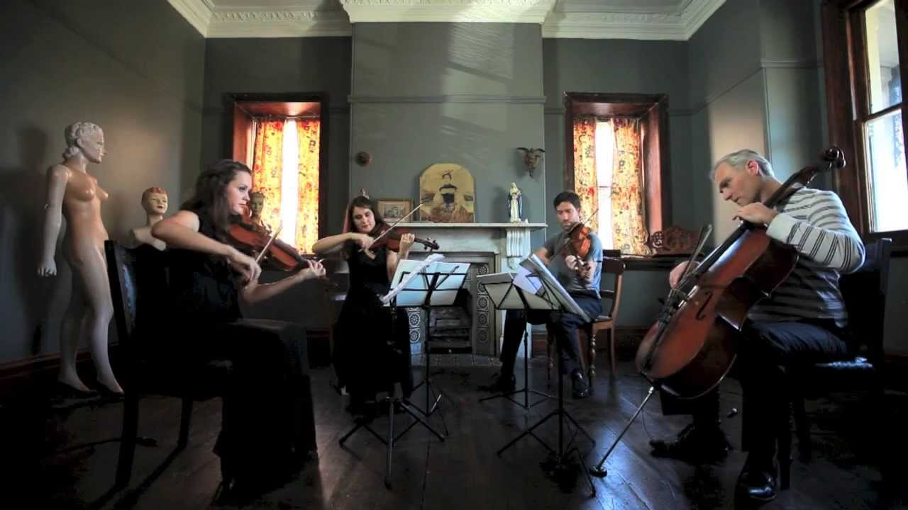 Best Violin Songs and Tips for Wedding Performances