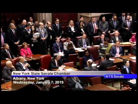 New York State Senate Session - 1/7/15