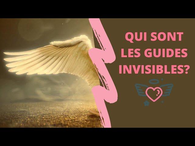 Guide de lumière  : nature ou fonction ?