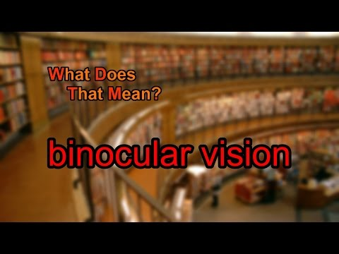 What does binocular vision mean?