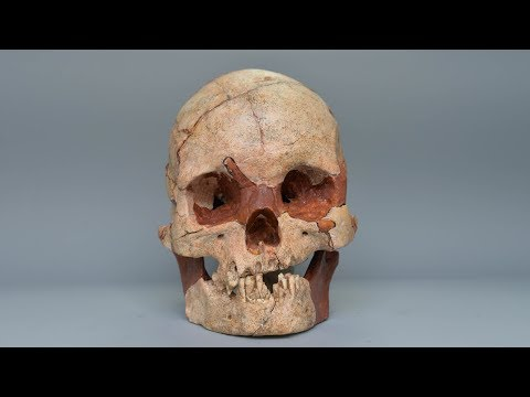 A 16,000-year-old intact human skull discovered in SW China