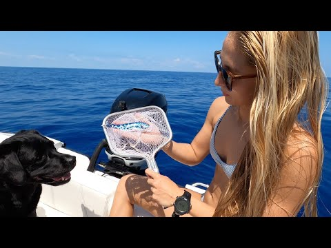 Scooping Up RARE Fish In Middle Of OCEAN!