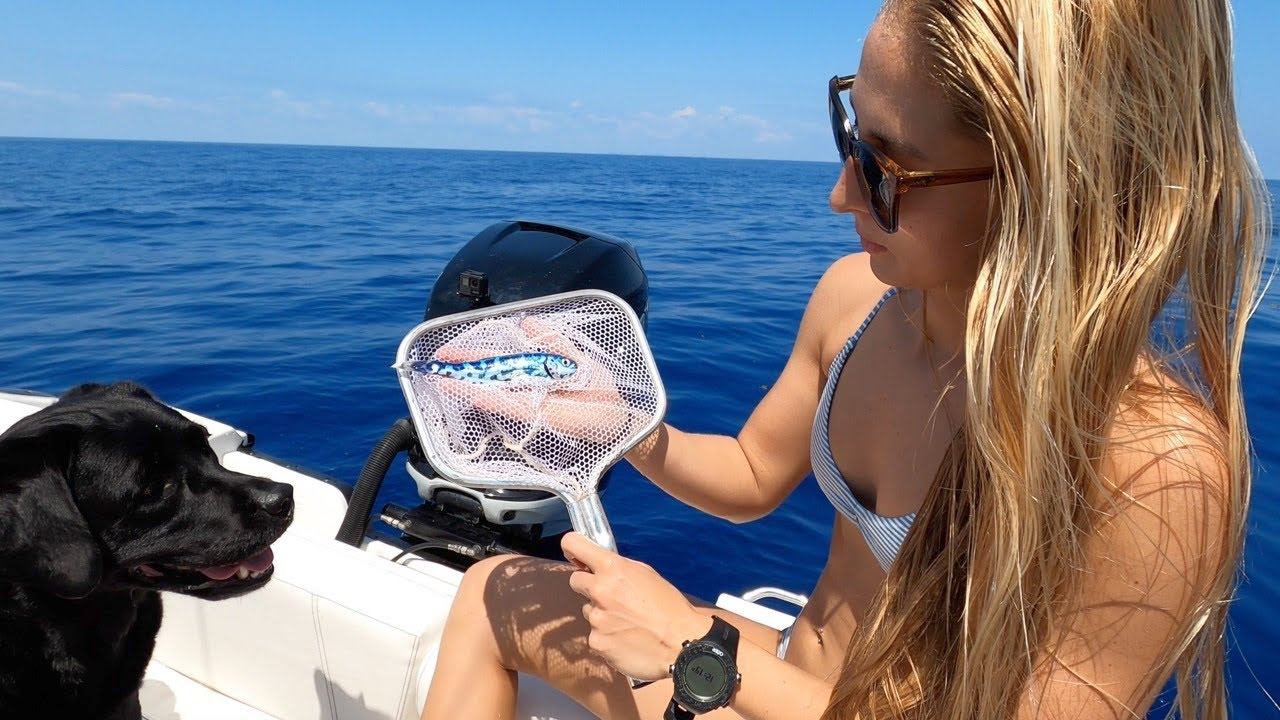 Гледайте какви рибки плуват в океана, такива сме виждали само на снимки!