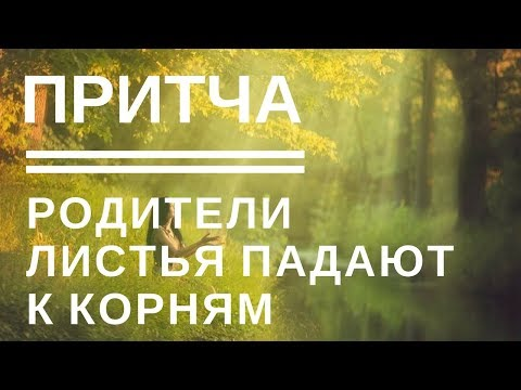 И с высокого дерева листья падают к корням Притча дня Мудрые притчи