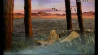 Amikor a dinoszauruszok uralták Kínát 2.rész